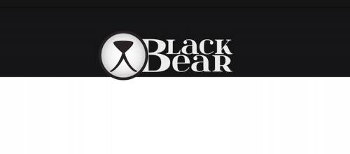 Black Bear Studio